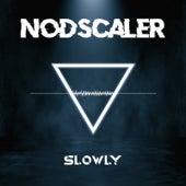 Slowly by Nodscaler