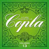 Lo Más Grande De La Copla - Vol 13 de Various Artists