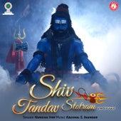 Shiv Tandav Stotram (Unplugged) - Single by Hamsika Iyer