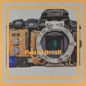 Partial Recall by Various Artists