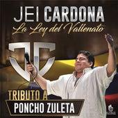 Mañanitas de Invierno von Jei Cardona