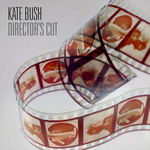 Director's Cut von Kate Bush