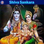 Shiva Sankara by Sanjivani Bhelande, Ketan Patwardhan, Ketaki Bhave Joshi, Mayur Bakshi, Prathamesh Laghate, Rajalakshmee Sanjay, Vighnesh Ghanapaathi, Gurumurthi Bhat, Shridhara Bhat, Sanjeevani Bhelande