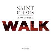 Walk - Acoustic by Saint Chaos