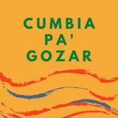 Cumbia Pa' Gozar de Bajo Palabra, Celso Piña, Flor De Piedra, Los Mirlos