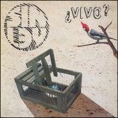 ¿ Vivo ? (En Vivo) by Sin Ley