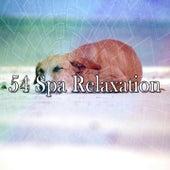 54 Spa Relaxation de Ocean Waves For Sleep (1)