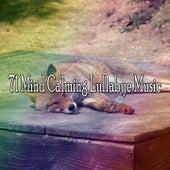 71 Mind Calming Lullabye Music de Ocean Waves For Sleep (1)
