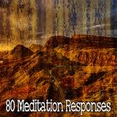 80 Meditation Responses by White Noise Meditation (1)