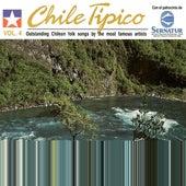 Chile Tipico Vol.4 Rio Rio de Various Artists