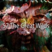 57 The Great Wilds de Yoga