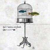 MTV Unplugged Música De Fondo de Zoé