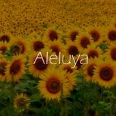 Aleluya (Cover) von Miquel de la Rosa