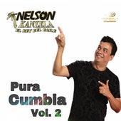 Pura Cumbia Vol.2 by Nelson Kanzela
