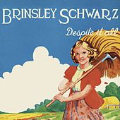 Despite It All de Brinsley Schwarz