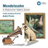 Mendelssohn: A Midsummer Night's Dream de Finchley Children's Music Group