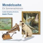 Mendelssohn: Ein Sommernachtstraum de Finchley Children's Music Group