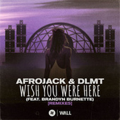 Wish You Were Here (feat. Brandyn Burnette) [Remixes] by Afrojack