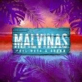 Malvinas by Chel Maya
