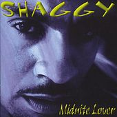 Midnite Lover by Shaggy