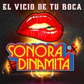 El Vicio De Tu Boca by La Sonora Dinamita
