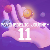Psychedelic Journey 11 by Various Artists