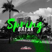 Spring Break Miami 2021: Best of Dance & House von Various Artists
