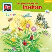 33: Die spannende Welt der Insekten von Was Ist Was Junior