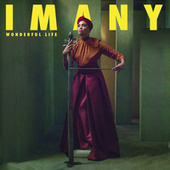Wonderful Life (Stream Jockey Rework) de Imany