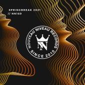 Nouveau Niveau Springbreak 2021 de Various Artists