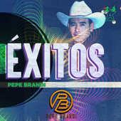 Éxitos by Pepe Brandi