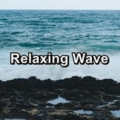 Relaxing Wave by Echoes of Nature