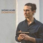 Domingo de Santiago Alvarez