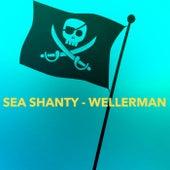 Sea Shanty – Wellerman de Various Artists