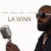 The Soul of a Man de A Winn