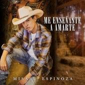 Me Enseñaste a Amarte de Misael Espinoza