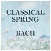Classical Spring: Bach von Johann Sebastian Bach