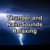 Thunder and Rain Sounds Relaxing by Nature Soundscape