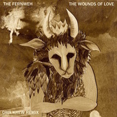 The Wounds Of Love by Fernweh