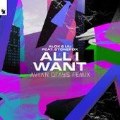 All I Want (AVIAN GRAYS Remix) de Alok