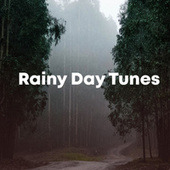 Rainy Day Tunes fra Various Artists