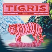Pompido EP by Tigris