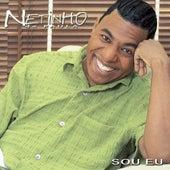Sou Eu by Netinho De Paula