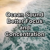 Ocean Sound Better Focus and Concentration van Beach Sounds