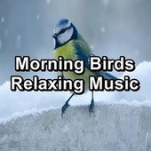 Morning Birds Relaxing Music by Spa Music (1)