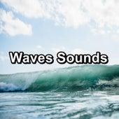 Waves Sounds de Ocean Live