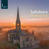 Salisbury Meditation von John Challenger