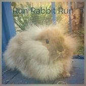 Run Rabbit Run by Various Artists