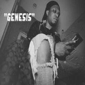 Genesis by Bodega