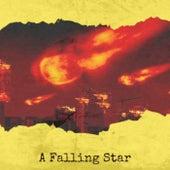 A Falling Star de Various Artists